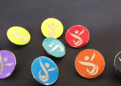 House colour badges